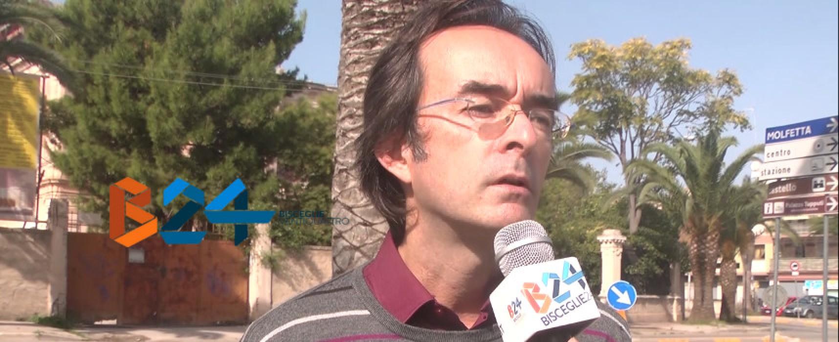 """Punteruolo rosso, l'appello di Mauro Sasso: """"Serve un piano di gestione del verde"""" / VIDEO"""