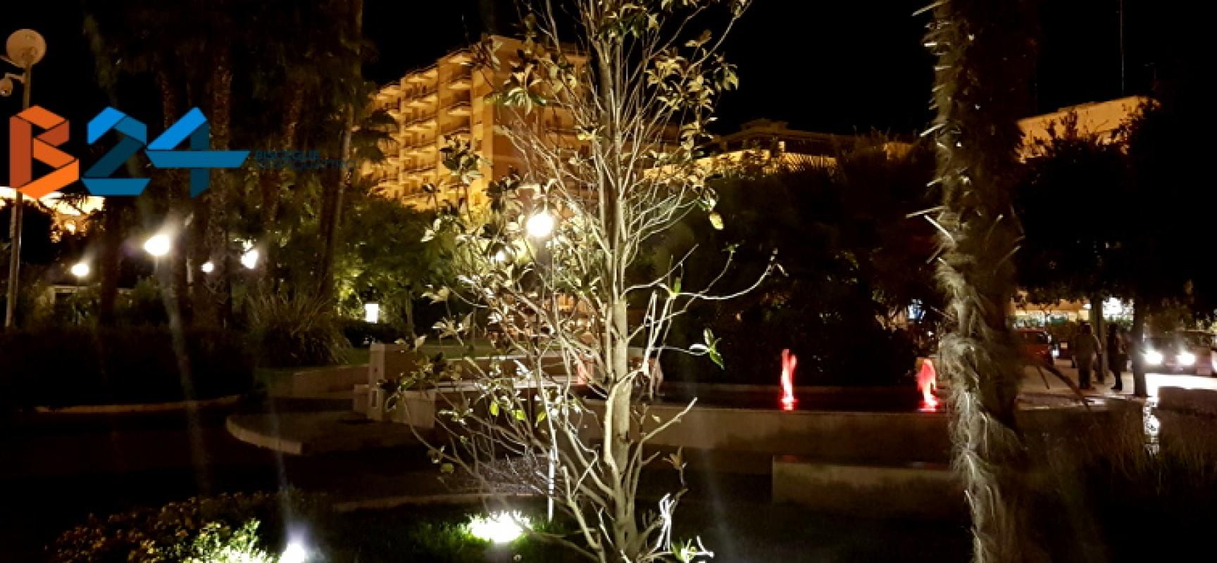 """Magnolia dottor Cosmai secca e spoglia, la famiglia: """"la memoria venga custodita degnamente"""""""