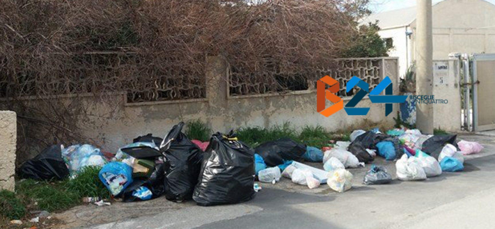 Ancora rifiuti abbandonati per strada: zona BiMarmi invasa da sacchetti di immondizia / FOTO