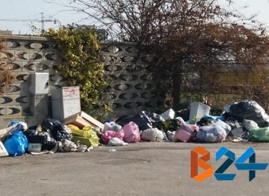 Cumuli di spazzatura in diversi punti della città / Reportage fotografico dell'inciviltà