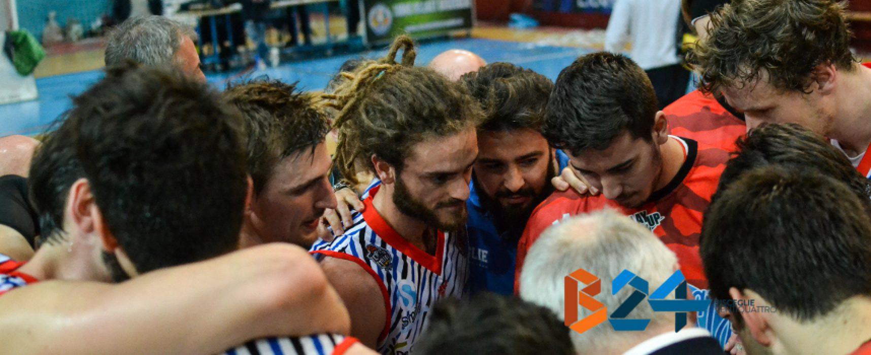 Lions sconfitti in casa da Palestrina in gara 1 della semifinale Playoff
