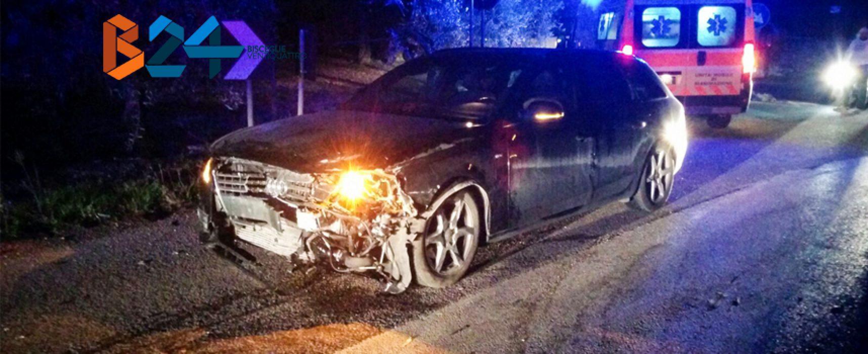 Incidente su via vecchia Ruvo, 4 feriti al pronto soccorso / FOTO