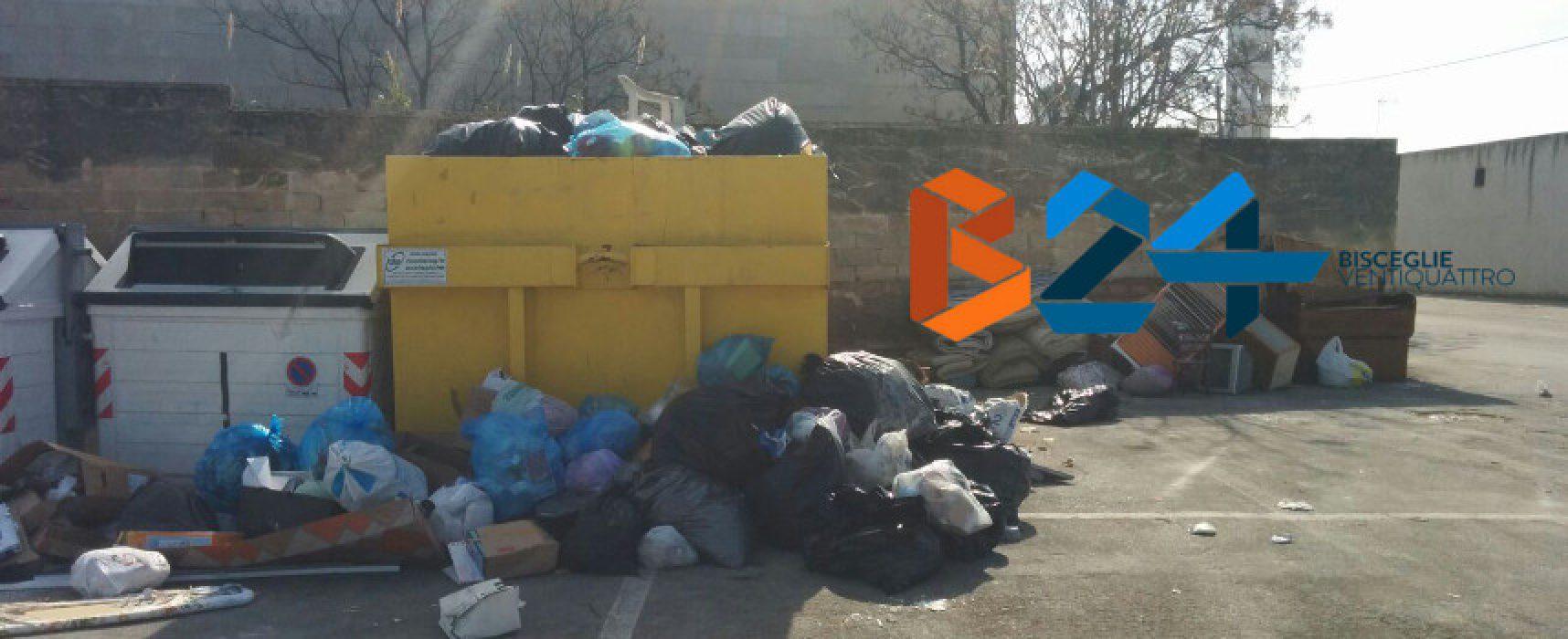 """Bisceglie Civile: """"Task Force contro evasione Tari e lotta all'abbandono rifiuti"""""""