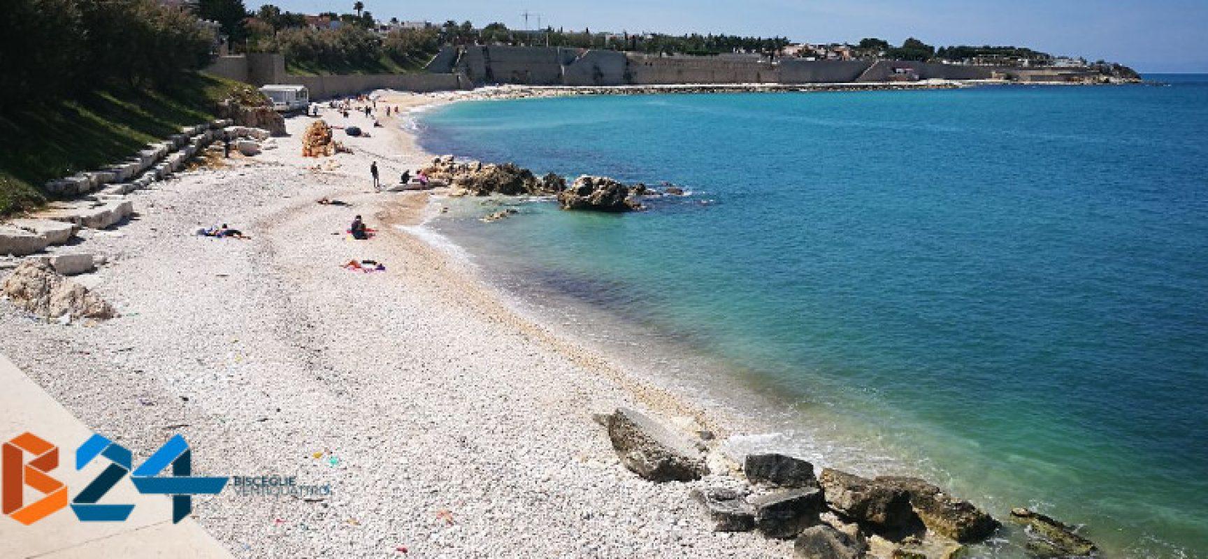 """Ruggieri: """"Nostre acque costiere in ottima salute e completamente balneabili"""""""