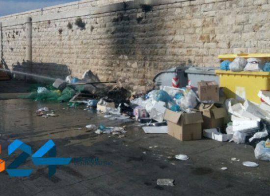 In fiamme cumulo di rifiuti sul molo di levante, intervengono i Vigili del Fuoco