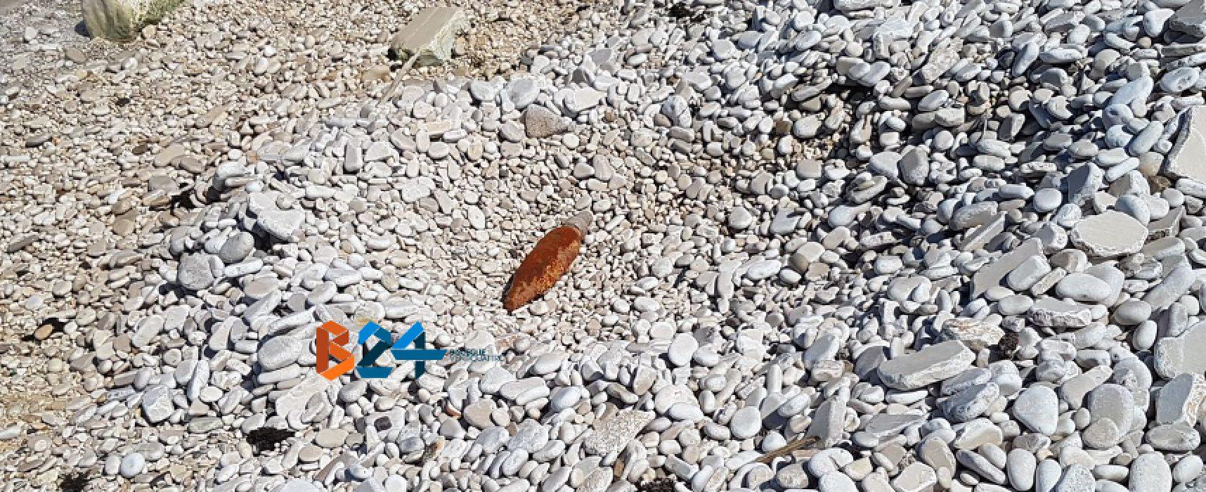Sub biscegliese ritrova ordigno bellico in zona Torre Calderina / FOTO