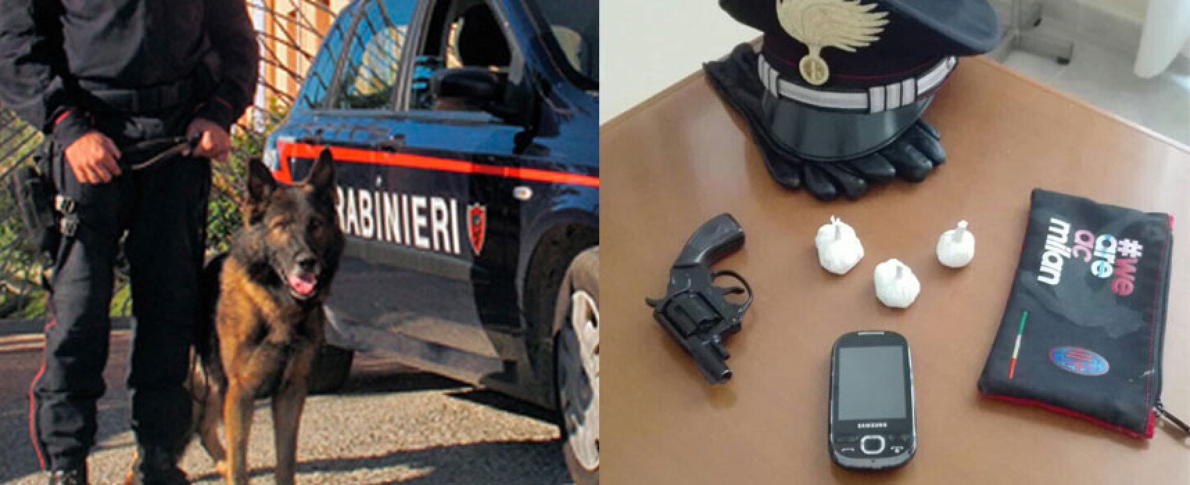 Pistola clandestina e cocaina in casa, arrestata giovane biscegliese