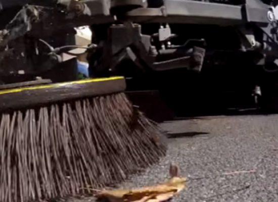 """Igiene urbana: Sangalli ad Ambiente 2.0, """"Tentativo di paralizzare decisione Consiglio di Stato"""""""