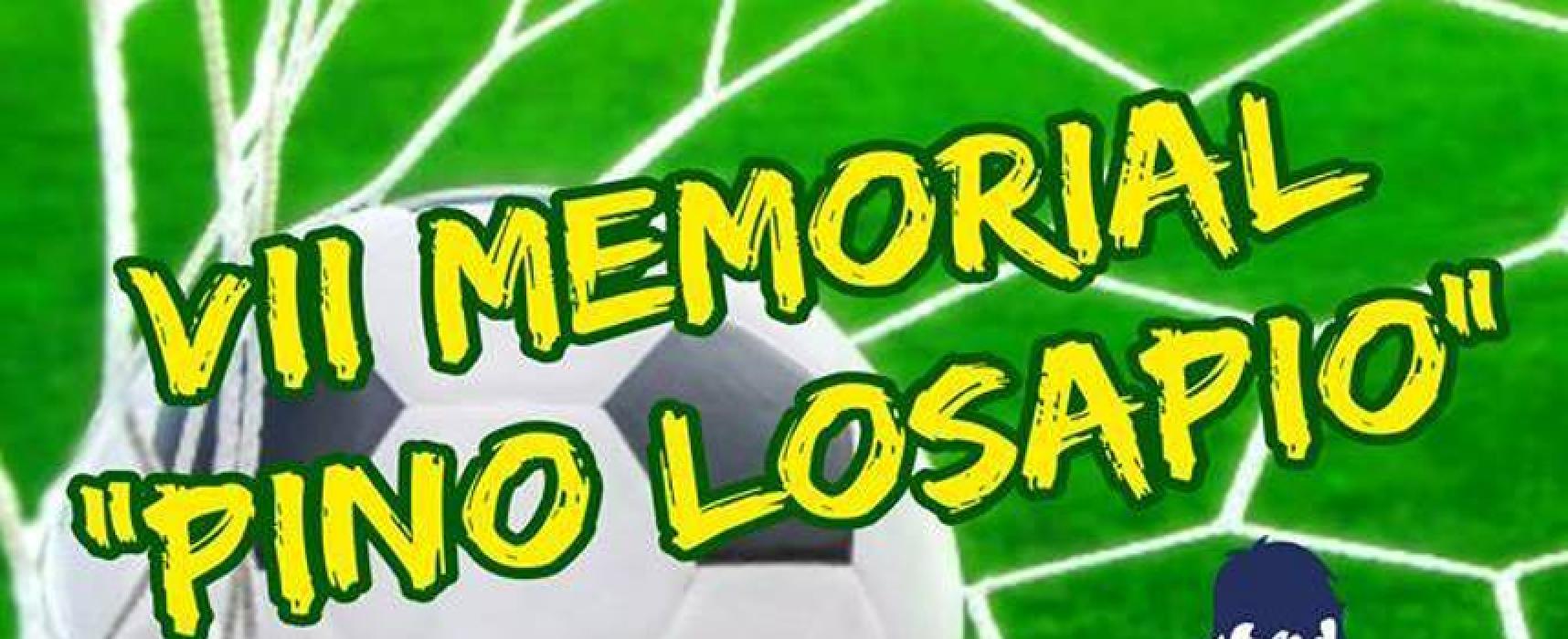 """Calcio giovanile, domenica 11 giugno la settima edizione del """"Memorial Losapio"""""""