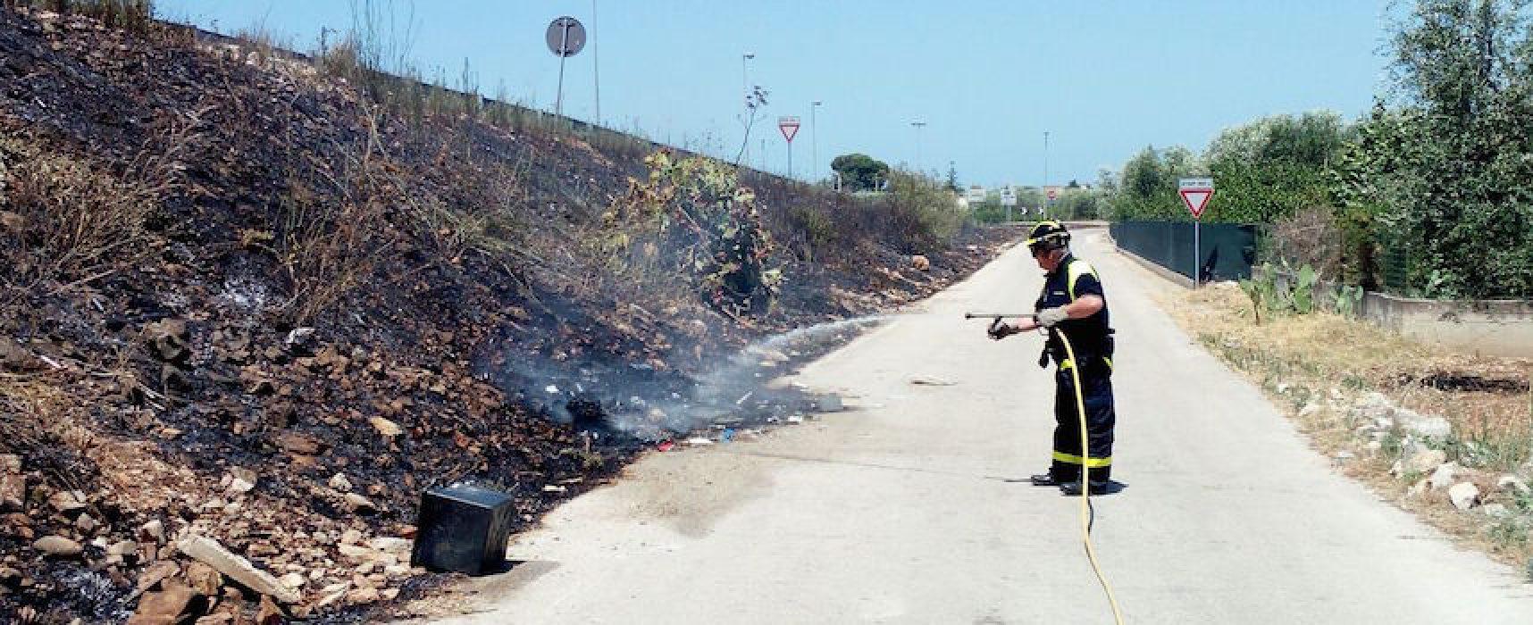 Cinque incendi negli ultimi due giorni su territorio biscegliese