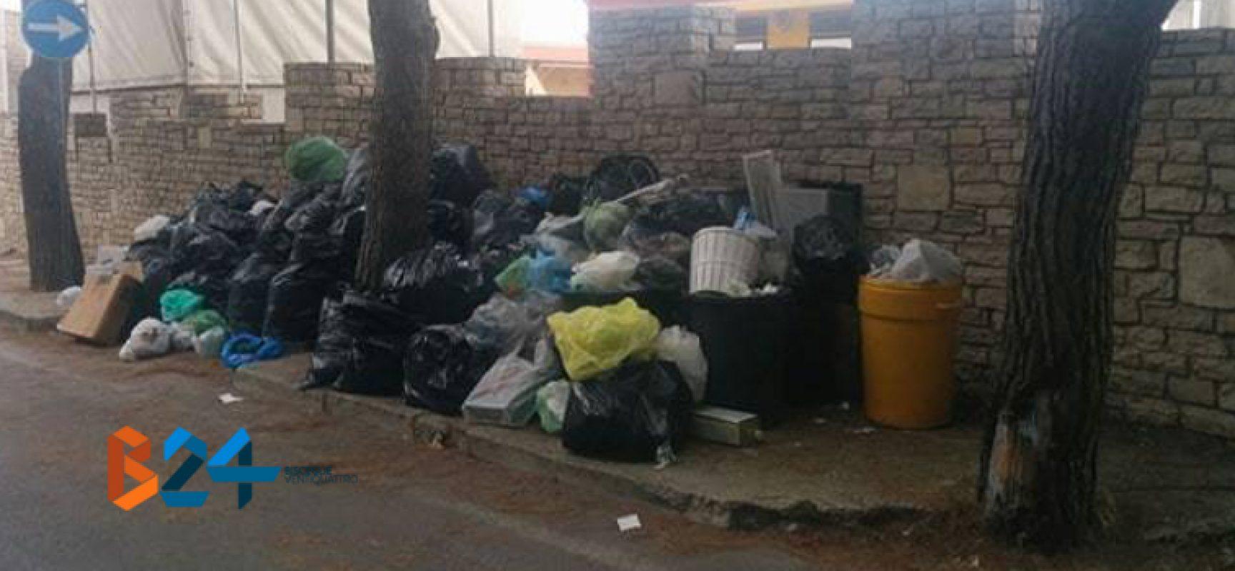 Cumuli di rifiuti accantonati su viale Ponte Lama / FOTO