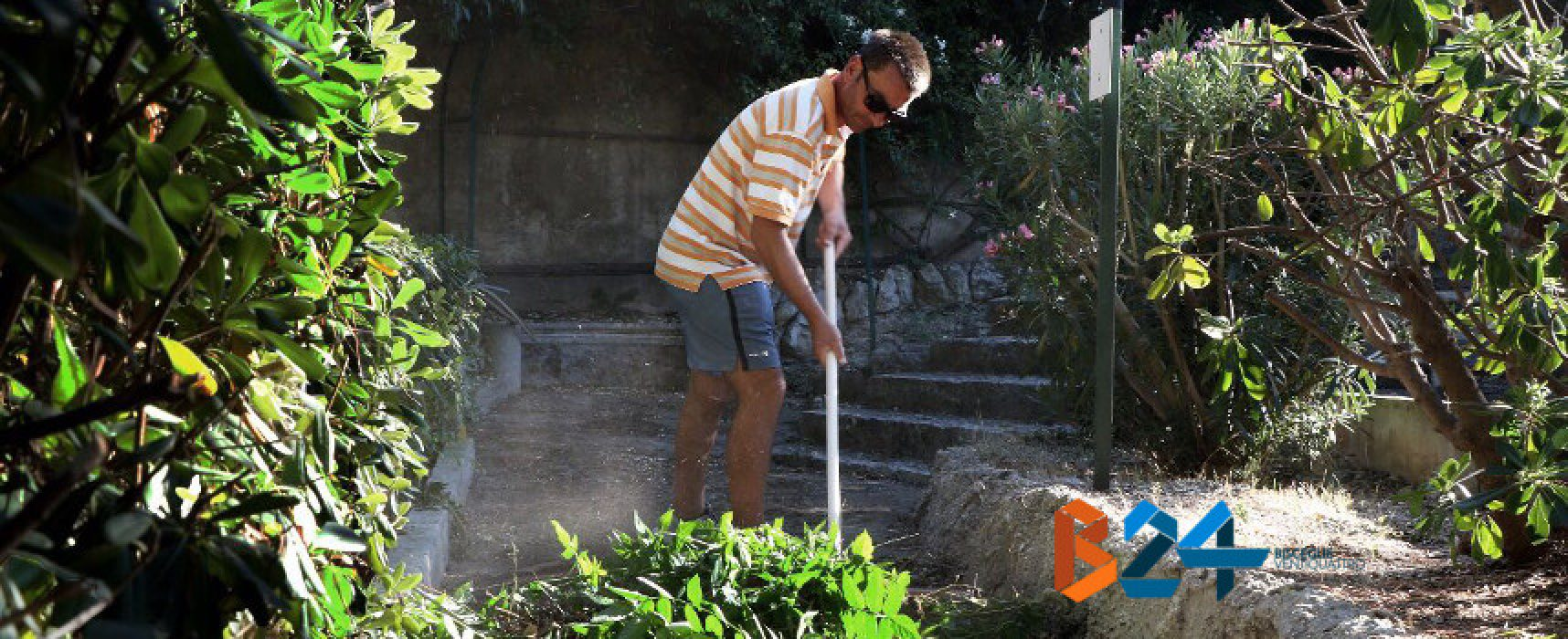 """Il giardino botanico riapre con l'iniziativa """"NoiZapp"""" dell'Aps Mosquito /FOTO"""
