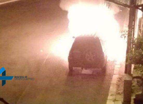 Auto in fiamme di fronte all'orto botanico, danneggiato albero di falso pepe