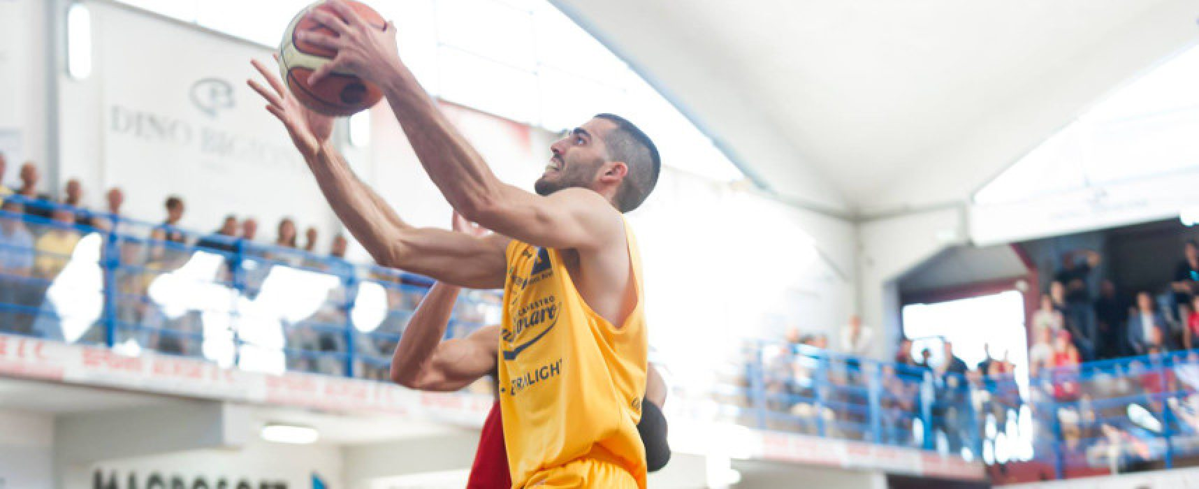 Lions Basket, arriva l'ala piccola Bedetti: nuovo roster sempre più competitivo