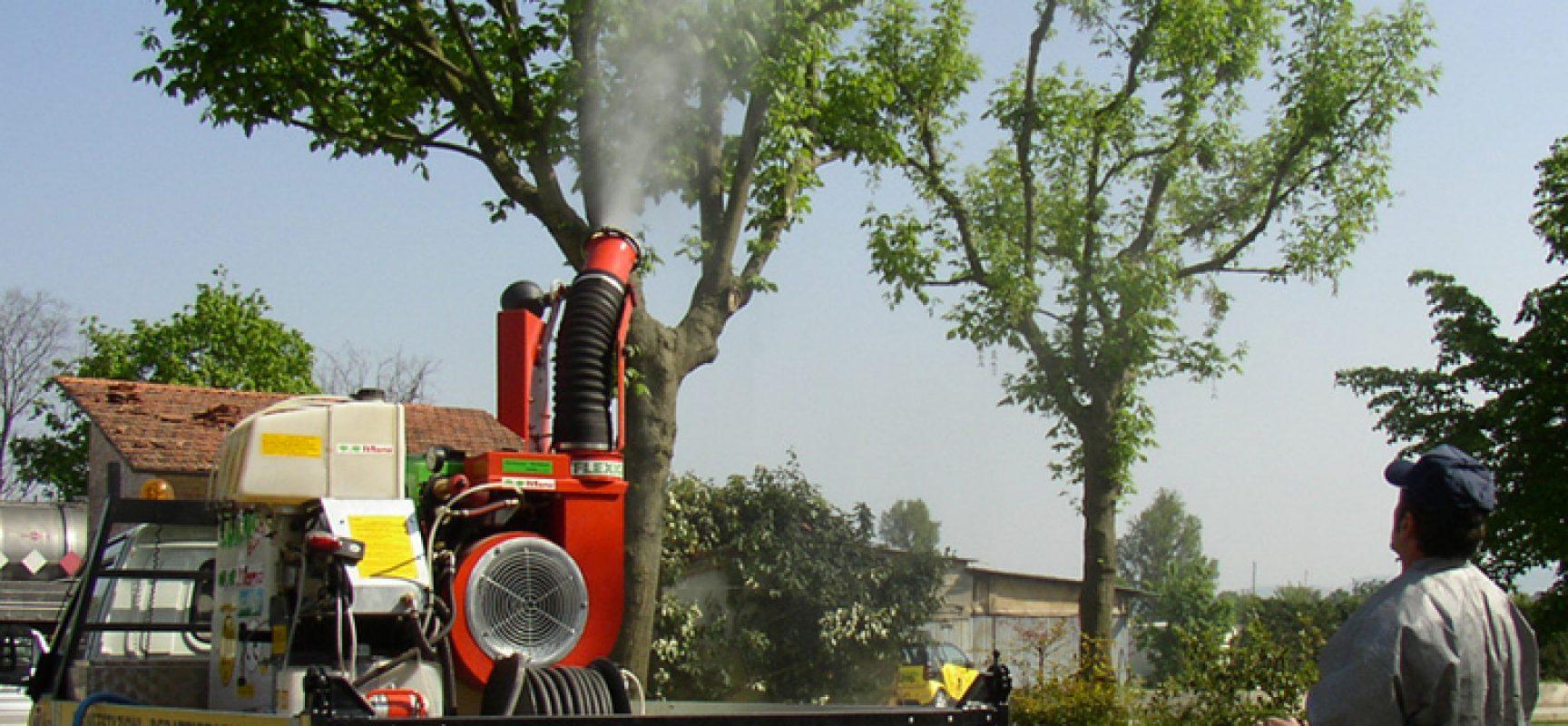Mosche e zanzare, nuovo intervento di disinfestazione in tutta la città / QUANDO