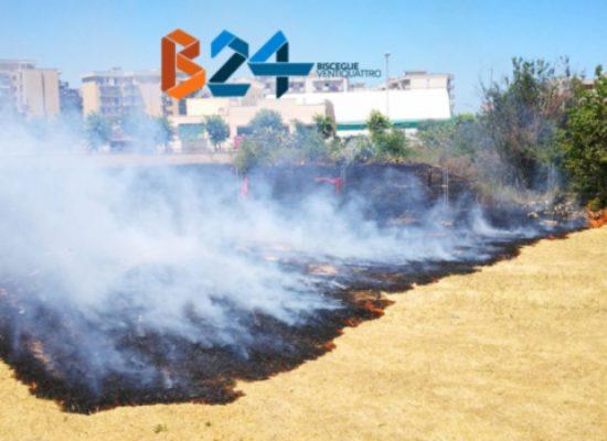 Ancora un incendio nel quartiere Sant'Andrea, a fuoco sterpaglie / FOTO