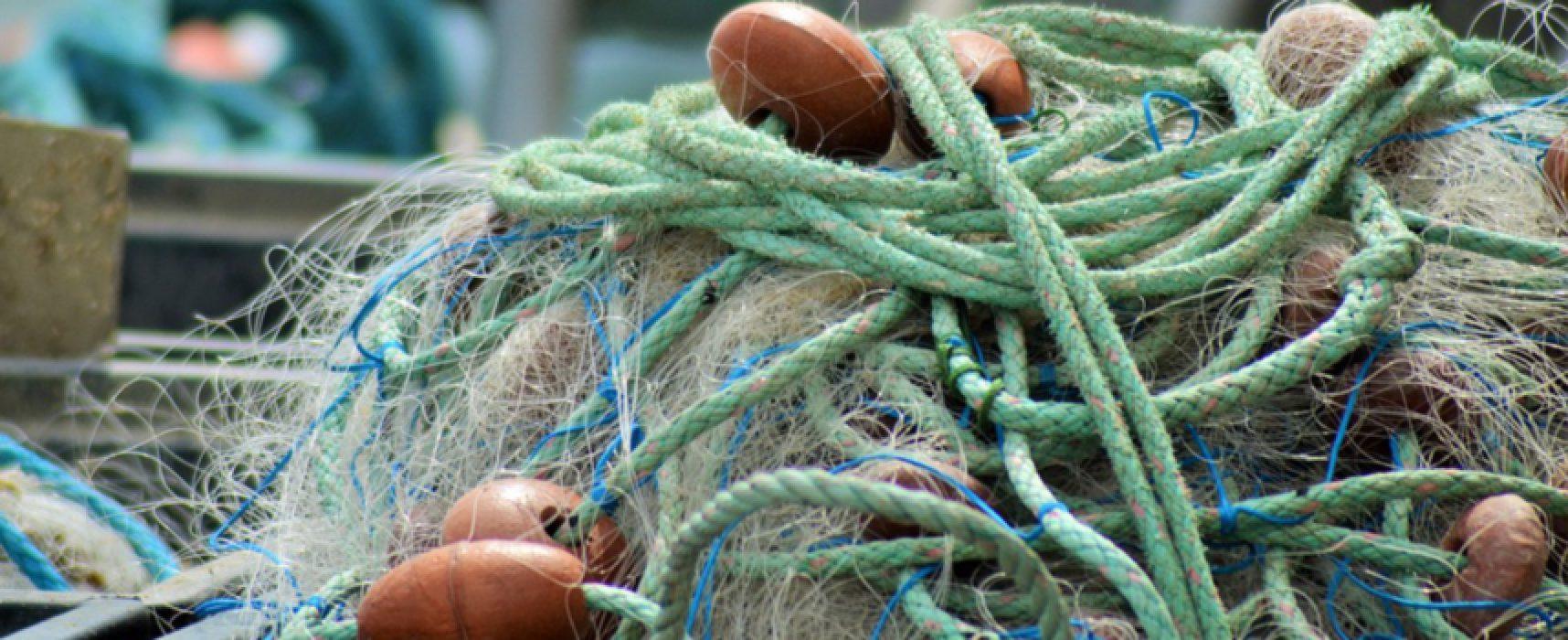 Regione approva proroga del fermo per la pesca a strascico