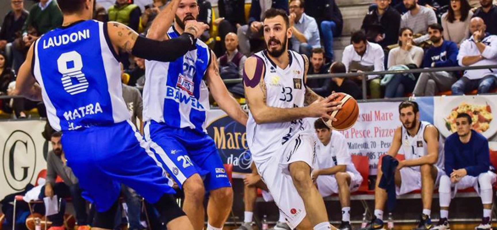 Lions Basket, altro pezzo da novanta nel roster: arriva l'ala/pivot Castelluccia