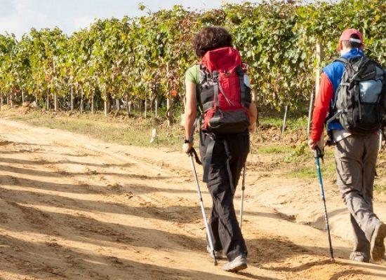 """Torna """"I viandanti di via Stradelle"""": tre itinerari per scoprire vie e monumenti dell'agro"""