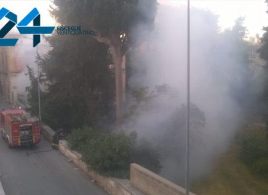 Incendio nell'orto Schinosa, a fuoco lattine e sterpaglie