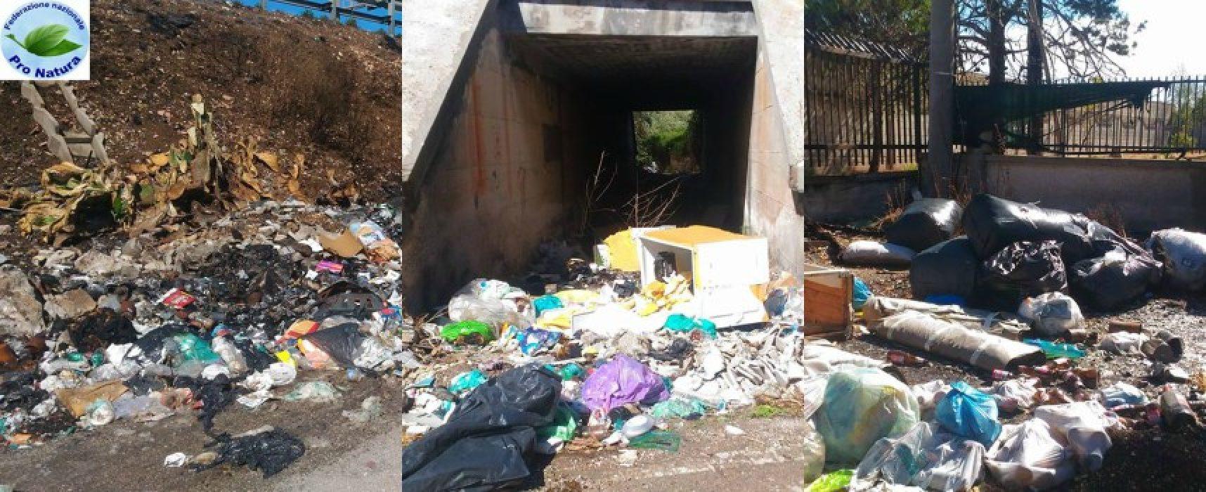 """Abbandono rifiuti, Mauro Sasso: """"Situazione peggiorata, intere vie invase da spazzatura"""" / FOTO"""