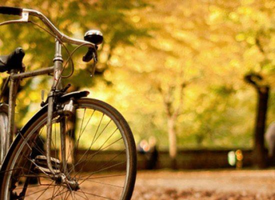 Festa Ognissanti firmata Biciliae, una pedalata per l'agro biscegliese