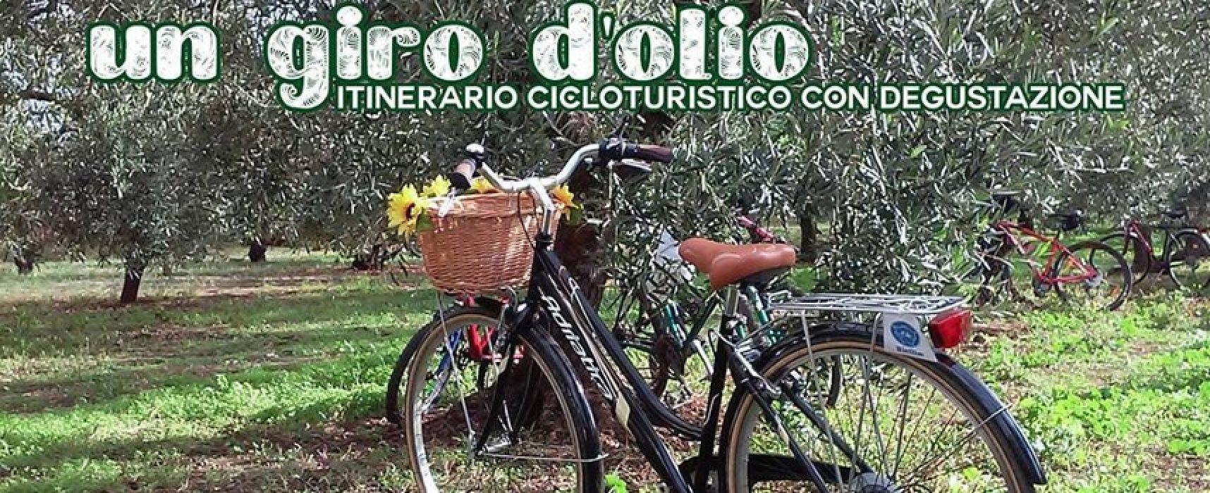 """""""Un giro d'olio"""", ciclotour per riscoprire l'ulivo e il suo frutto organizzato da Biciliae"""