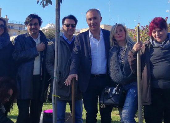 """Meetup """"Bisceglie a 5 stelle"""", piantato albero in piazza Vittorio Emanuele contro l'inquinamento"""