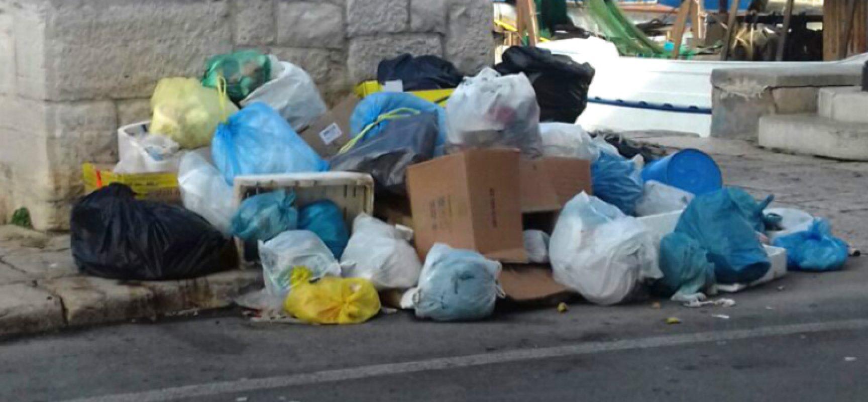 """Spina presenta nuova interrogazione comunale su igiene urbana: """"Ancora lussuosi affidamenti diretti"""""""