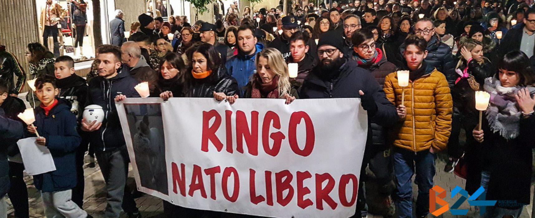"""Centinaia di persone in strada per Ringo, gli organizzatori: """"Investito e non soccorso"""""""