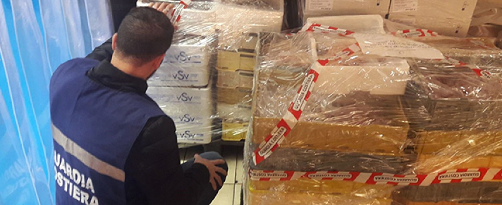 Finge malore durante controllo, 450 chili di prodotti ittici confiscati in magazzino biscegliese