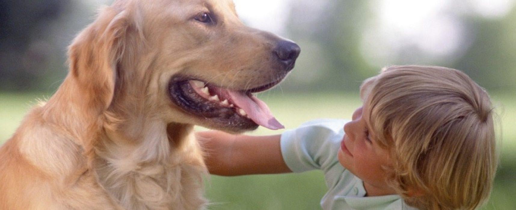 """Oggi presentazione progetto pet therapy delle scuole """"Arcieri"""" e """"De Amicis"""""""