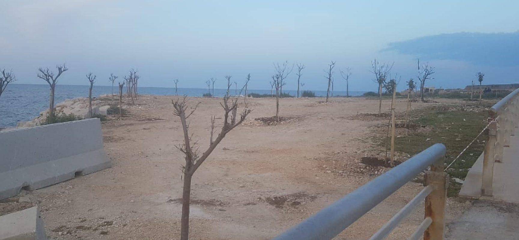 Rotary e Pro Natura aderiscono alla Giornata mondiale della Terra con piantumazione alberi