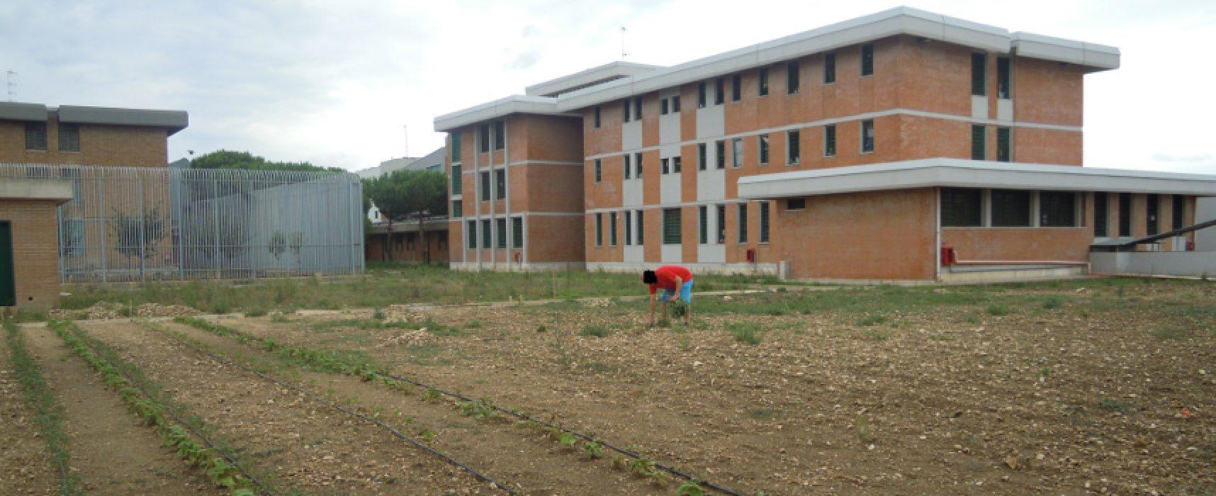 La cooperativa Irsea realizza corso di giardinaggio per i detenuti della Casa circondariale di Trani