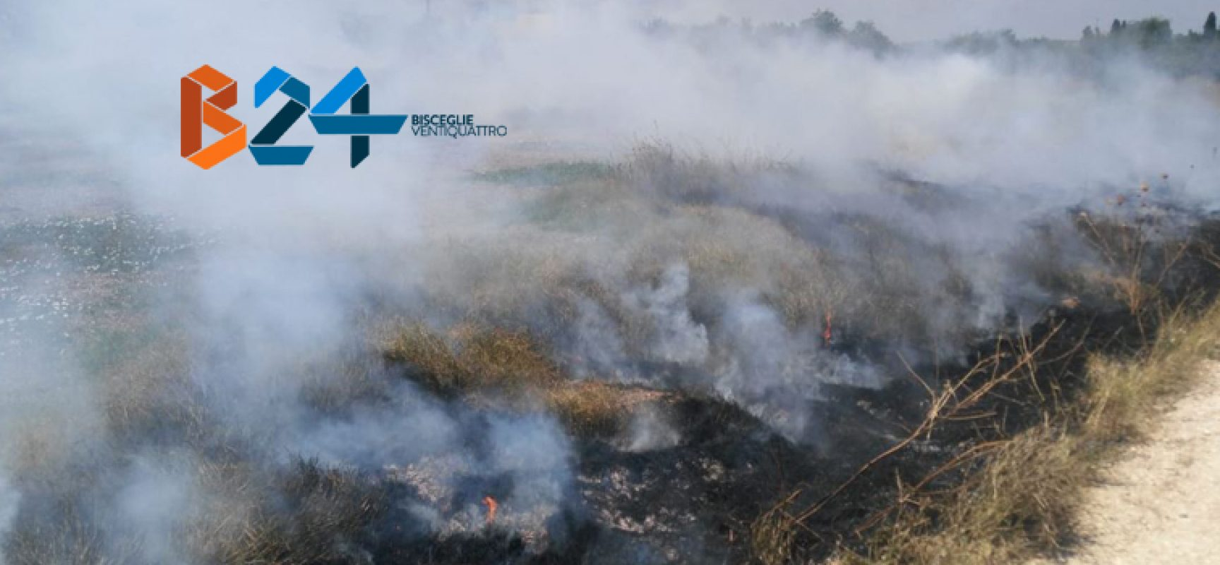 Incendio in terreno incolto in zona Crosta