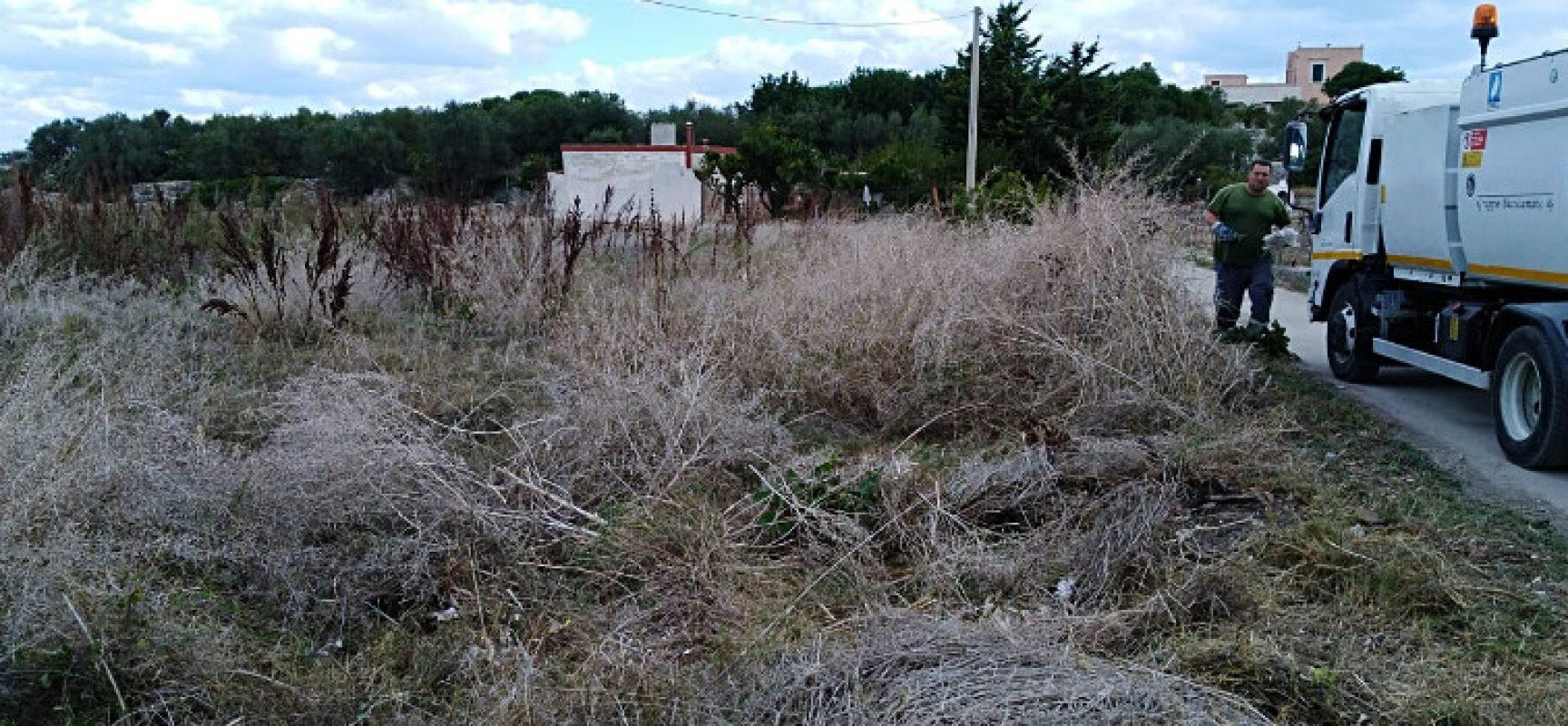 """Igiene urbana, assessore Consiglio: """"Raccolte tonnellate di rifiuti dall'agro"""""""