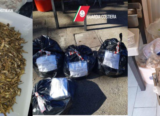 Denuncia e sequestro del prodotto per un ristorante giapponese a Bisceglie