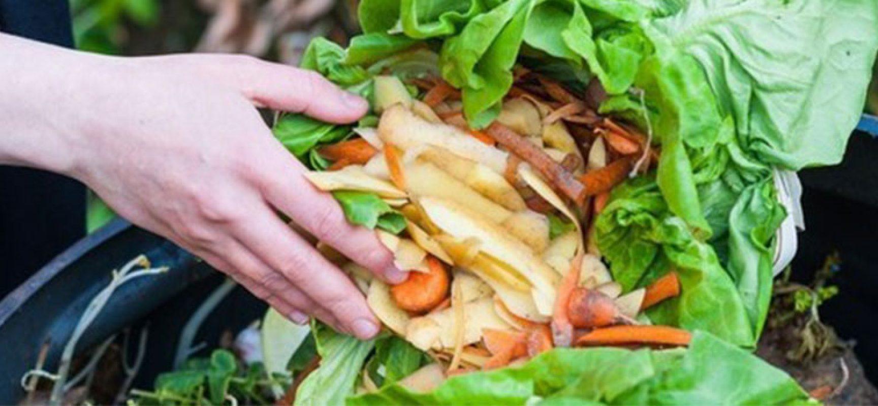 Al Castello di Bisceglie workshop per il contrasto allo spreco alimentare