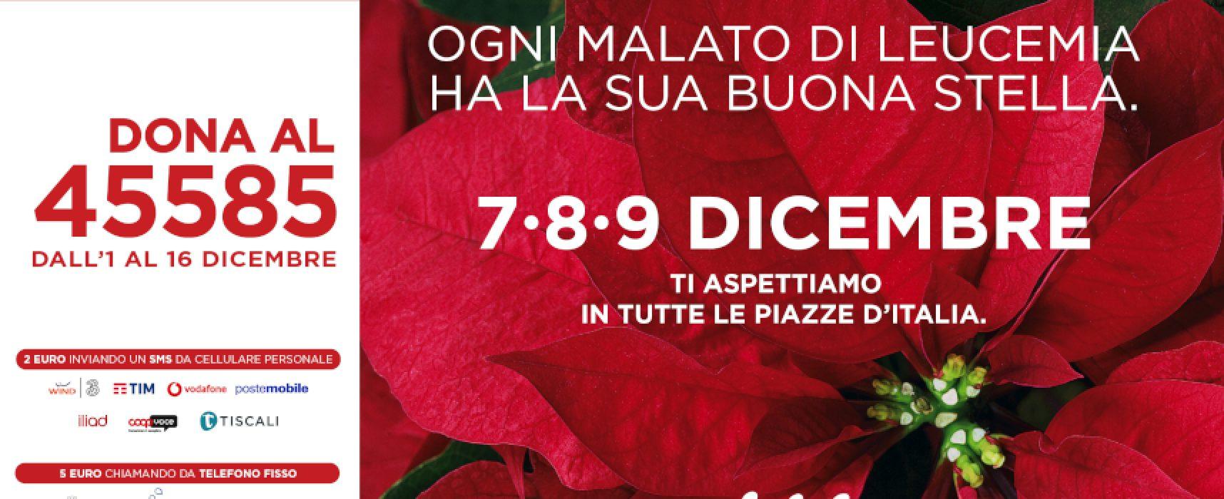 """Ail in piazza a Bisceglie per la vendita della """"buona stella"""" di Natale"""