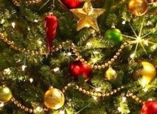 Ambiente 2.0 annuncia servizio di raccolta per alberi di Natale e addobbi dismessi