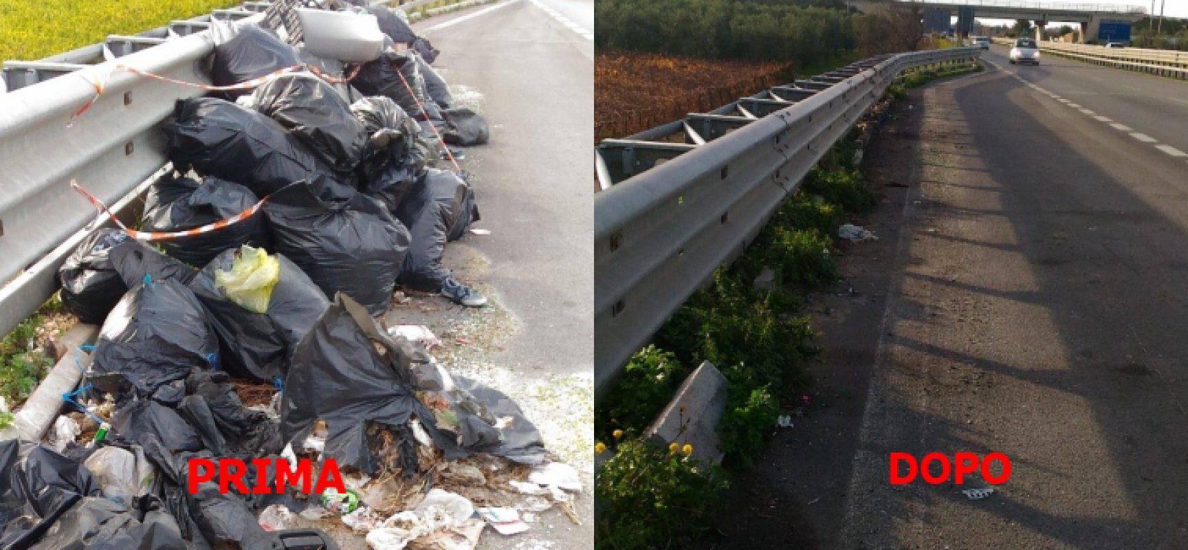"""Pro Natura: """"Iniziata la rimozione dei rifiuti dalla piazzole di sosta sulla SS16"""""""