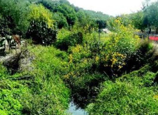 Demanio idrico superficiale, finanziamento di 47mila euro dalla Regione