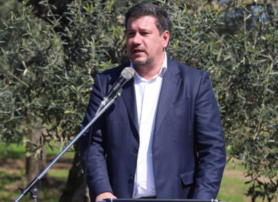 """Silvestris: """"In Europa per bloccare la diffusione della Xylella"""""""
