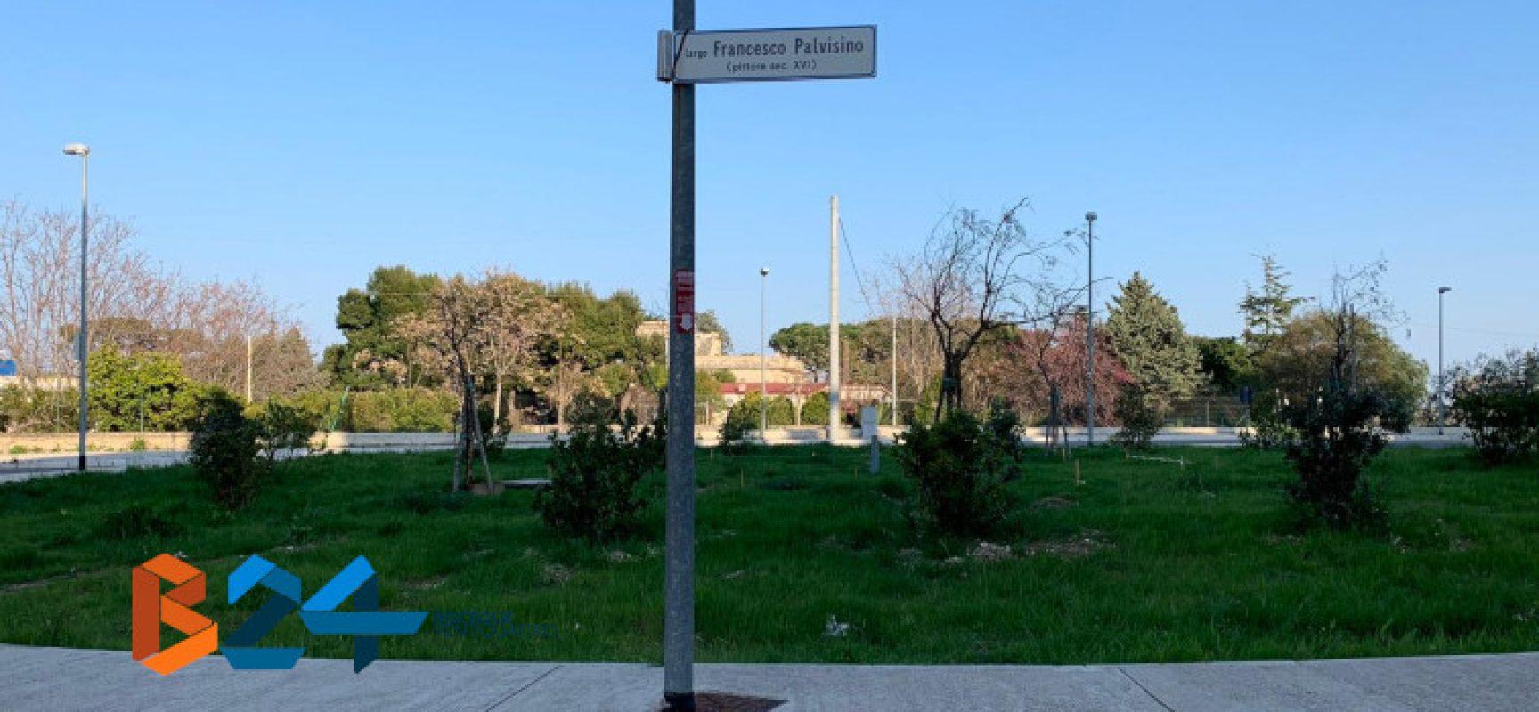 Zona 167, al verde pubblico ci pensano i condomini