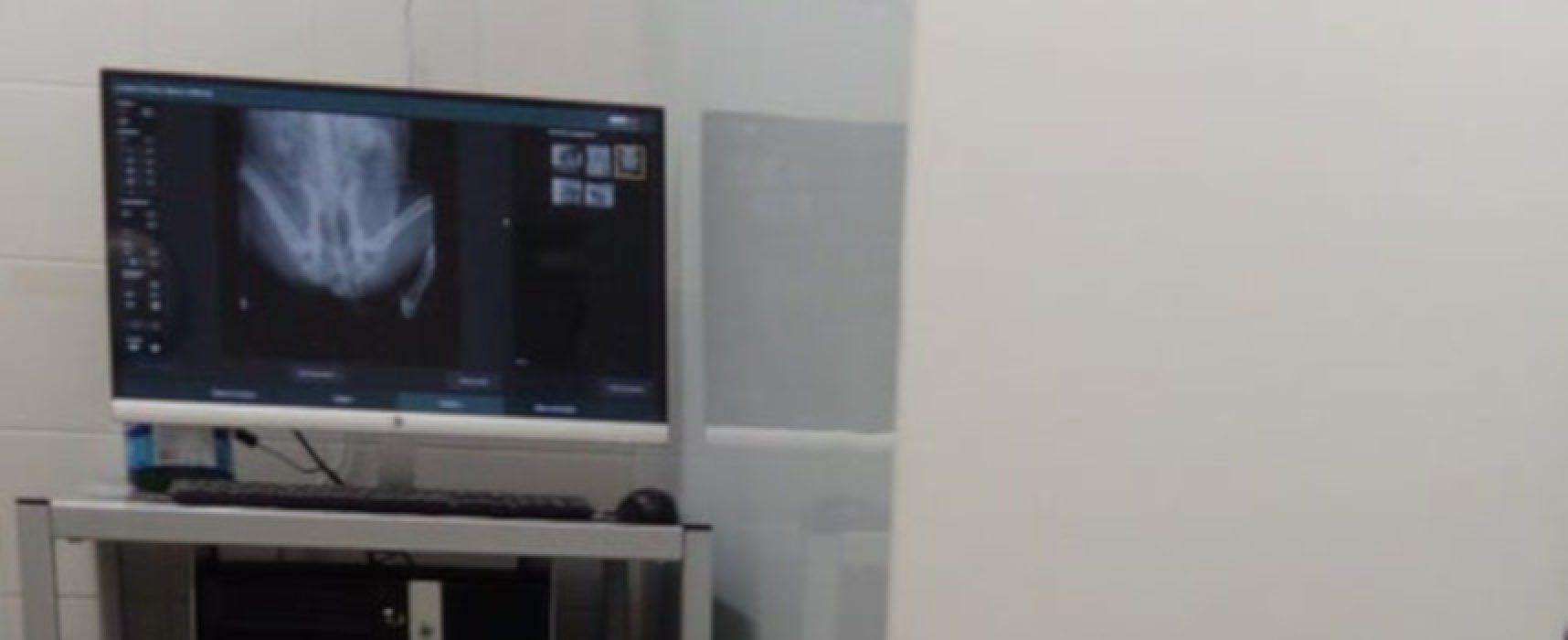 Centro Veterinario Papagni, sempre più all'avanguardia col servizio di radiologia digitale