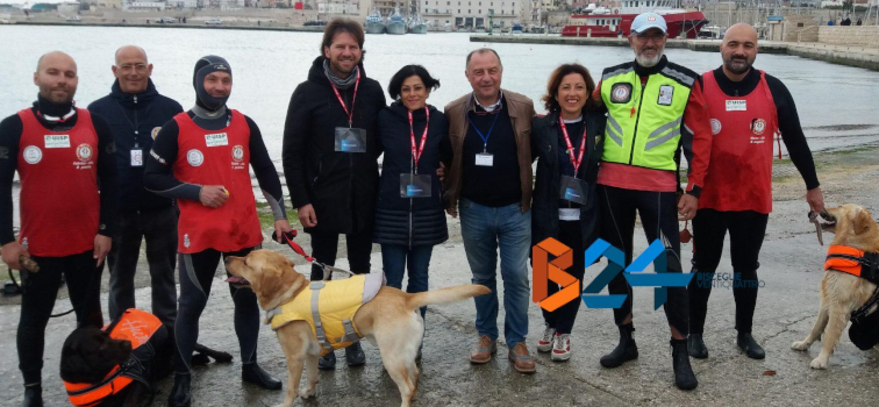 Scuola Cani Salvataggio Nautico, domenica a Bisceglie la prima lezione / DETTAGLI