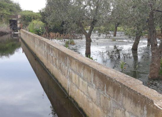 "M5s Bisceglie: ""Segnalato sversamento acque reflue in Carrara Lama di Macina"" / FOTO"