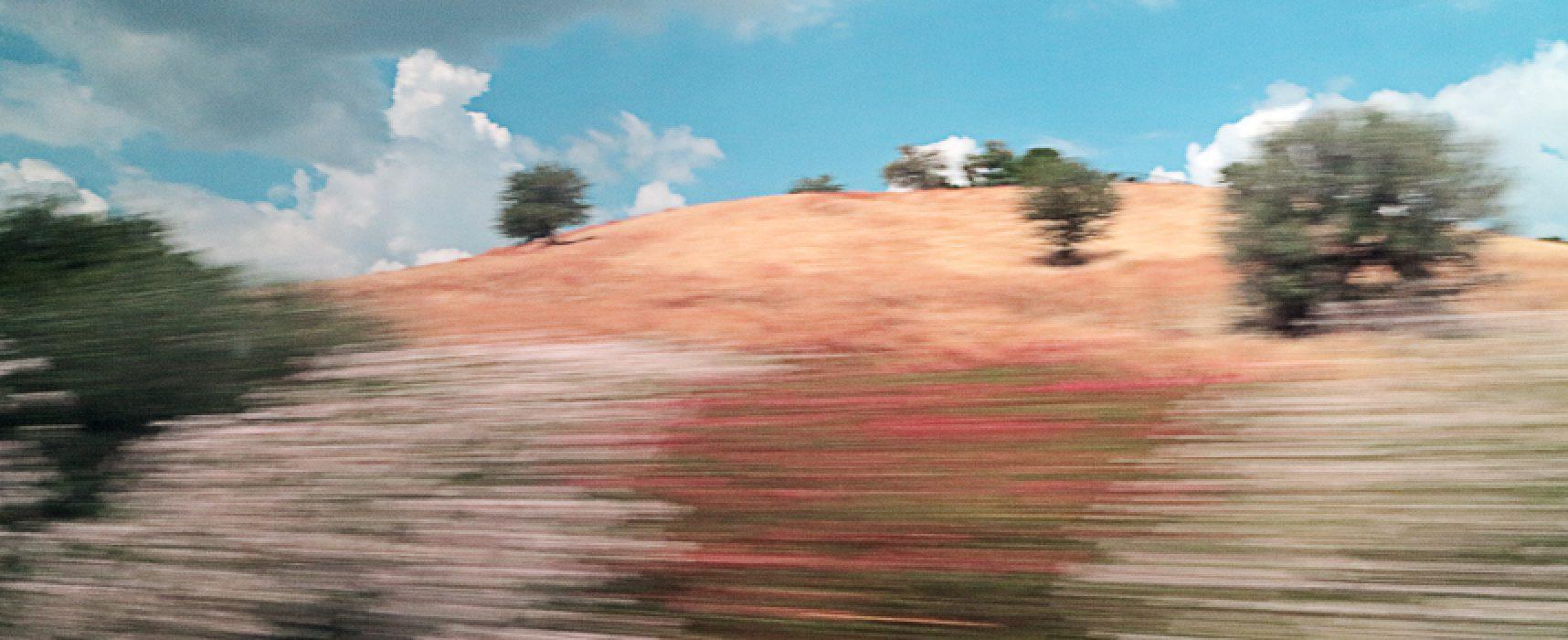 """Foto scattate da finestrini di treni in viaggio, Giuseppe Pavone presenta """"Punti di fuga"""""""