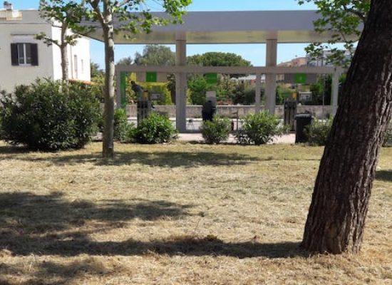 Prosegue manutenzione verde, bonificati orto Schinosa e piazza Salvo D'Acquisto