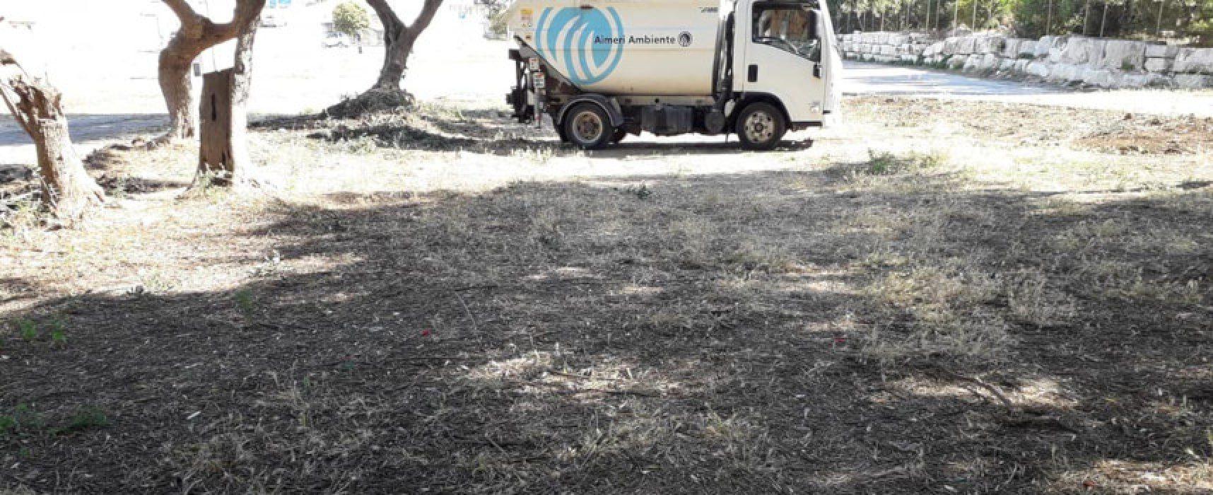 """Arena del Mare, Angarano: """"I fruitori siano più civili"""""""